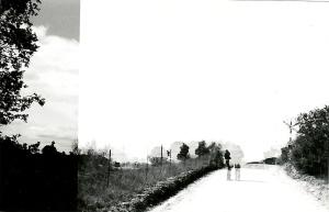 fotosentudela8